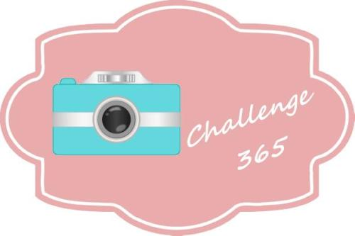 photo365 challenge picture